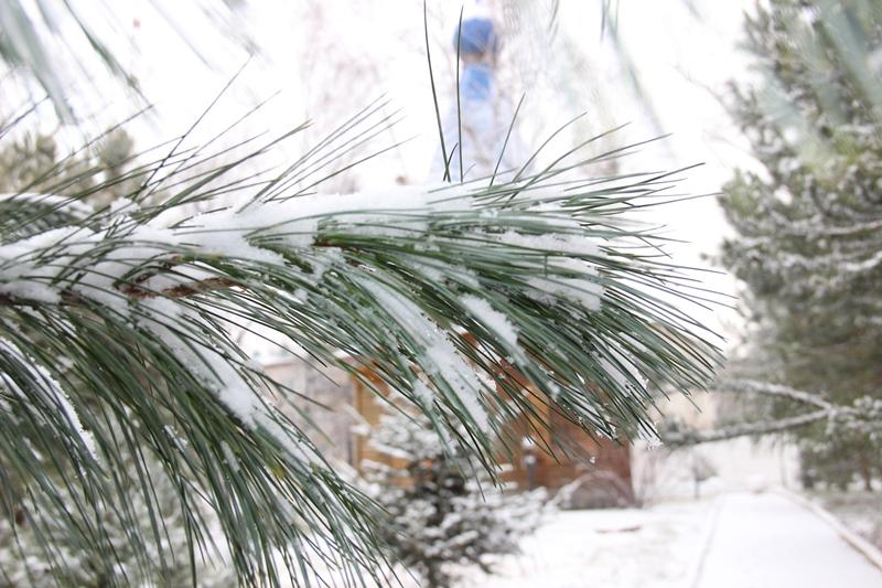 Циклон принесёт в Хабаровский край вновь сильный снег и ветер