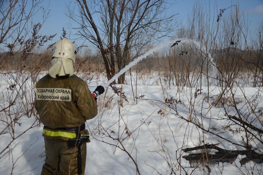 Комплексная тренировка по тушению лесного пожара в поселке Корфовском Хабаровского района