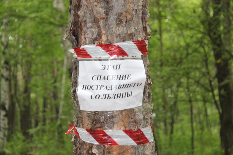 """Краевые соревнования """"Школа безопасности 2014"""""""