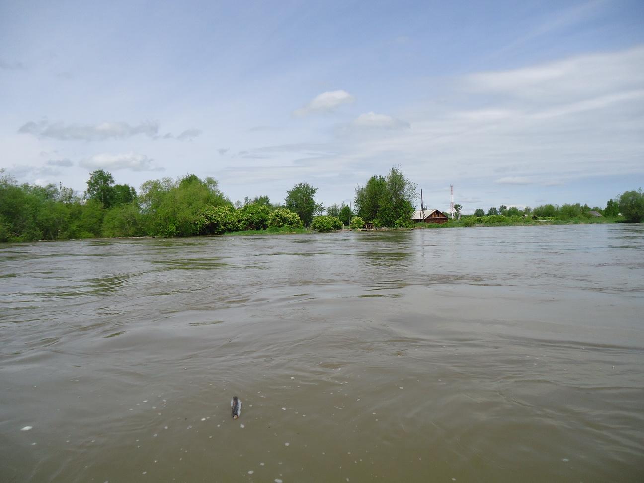 Как правильно вести себя во время паводка,наводнения
