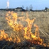 Мусор – причина пожаров