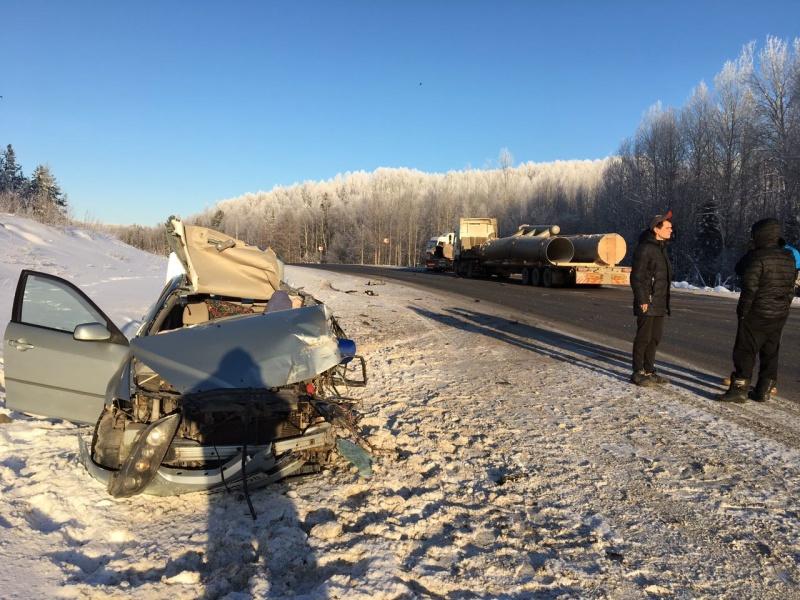 История одного спасения: уватские пожарные спасли в зимнем лесу фокстерьера, убежавшего с места ДТП