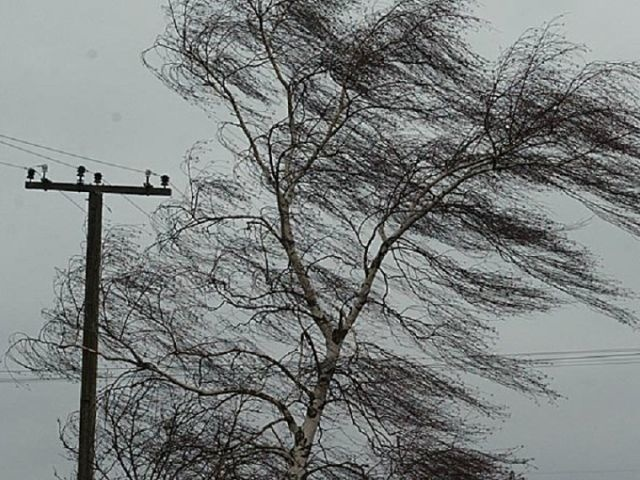 Будьте внимательны! На территории Орловской области ожидаются неблагоприятные явления погоды