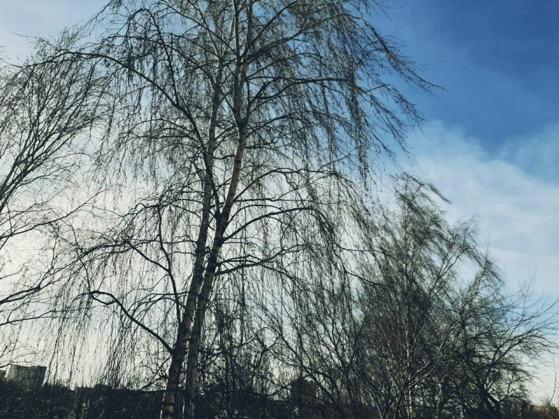 Будьте внимательны! 12 марта в Брянской области ожидается ухудшение погодных условий