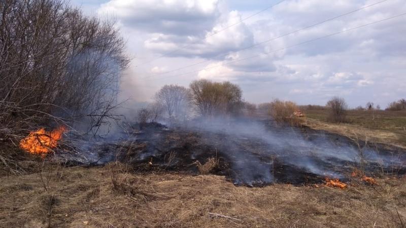 Сжигать сухую траву опасно