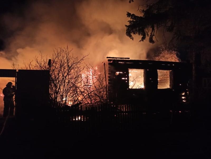 Пожарно-спасательные подразделения Пензенской области ликвидировали пожар Нижнеломовском районе