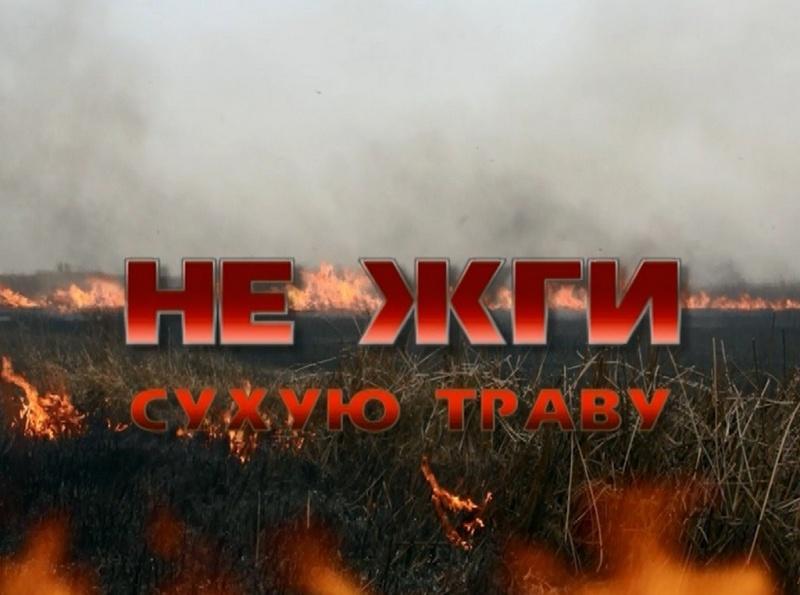 За сутки пожарные Костромской области 10 раз выезжали на тушение горящей травы