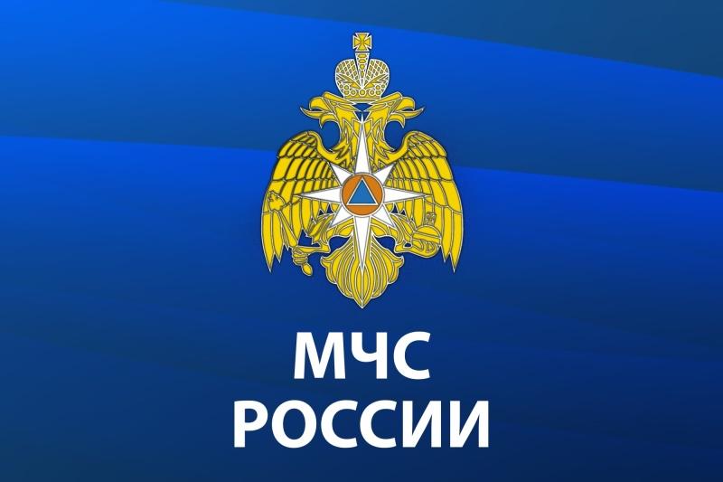МЧС России запущен интерактивный сервис с информацией по распространению коронавируса COVID-19