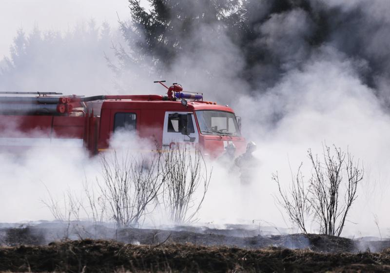 Подразделения пожарной охраны в два раза чаще выезжают на ликвидацию природных пожаров