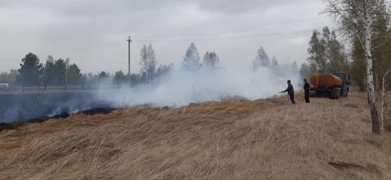 Поджигателей травы привлекают к ответственности.  Возбуждено первое уголовное дело