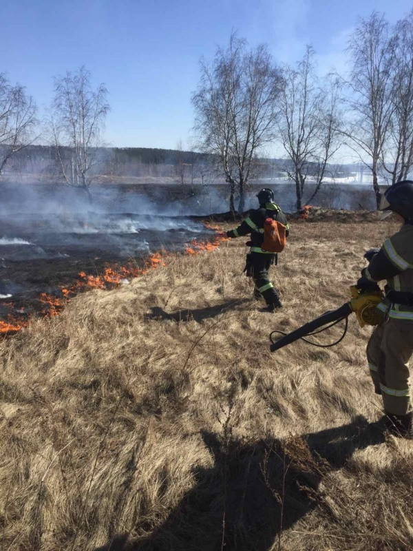 О необходимости взять под особый контроль пожароопасные места и очистить территории от сухостоя и мусора напоминают собственникам государственные инспекторы по пожарному надзору