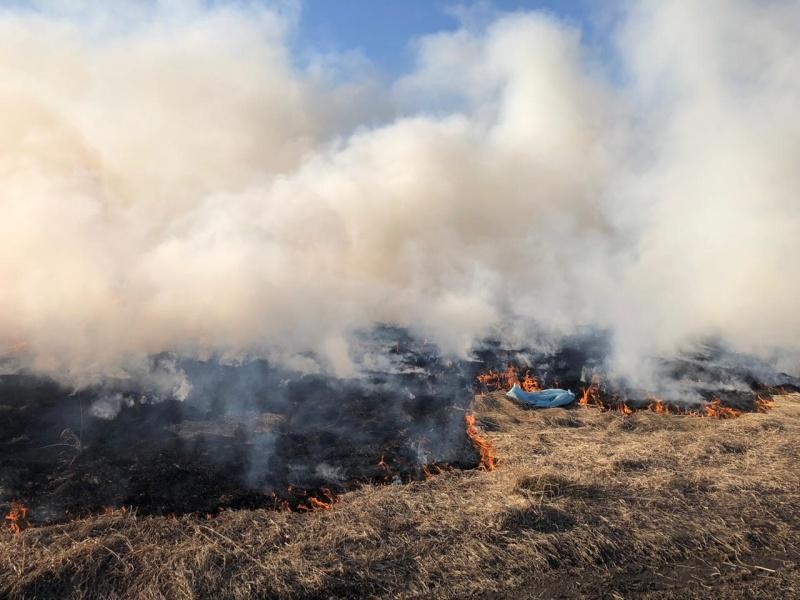 Повышение классов пожарной опасности прогнозируется в большинстве районов Иркутской области с 23 по 25 мая