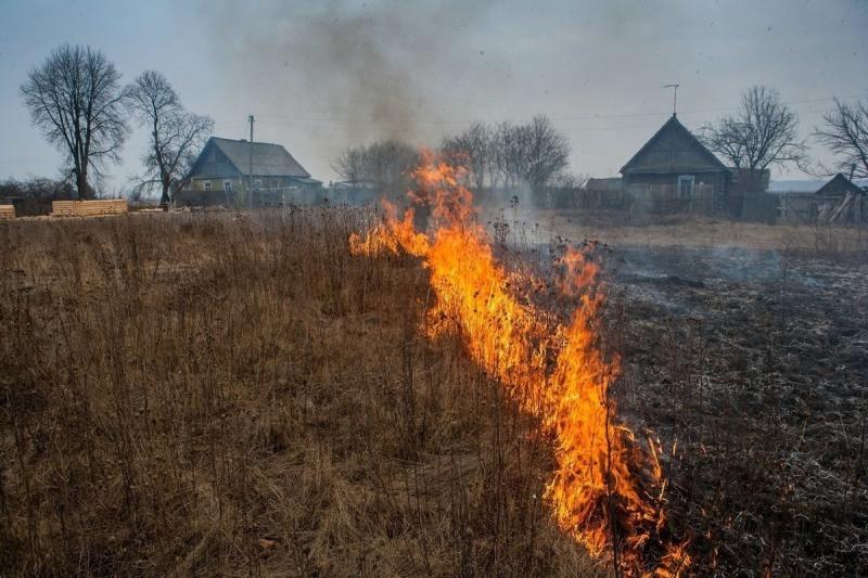 Более 24 гектаров сухой растительности выгорело на Камчатке за пять дней