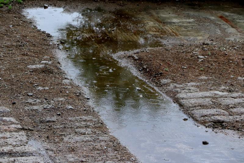 Синоптики прогнозируют дожди и грозы в Бурятии