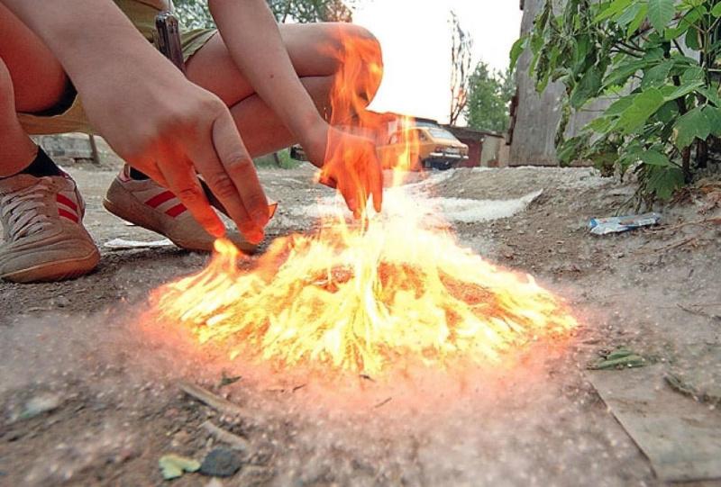 """Тополиный пух - источник пожарной опасности и опасная """"игрушка""""  для детей!"""