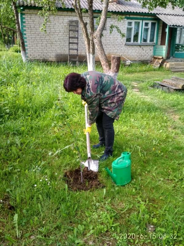 Калужские сотрудники МЧС продолжают своё участие в международной акции «Сад памяти»