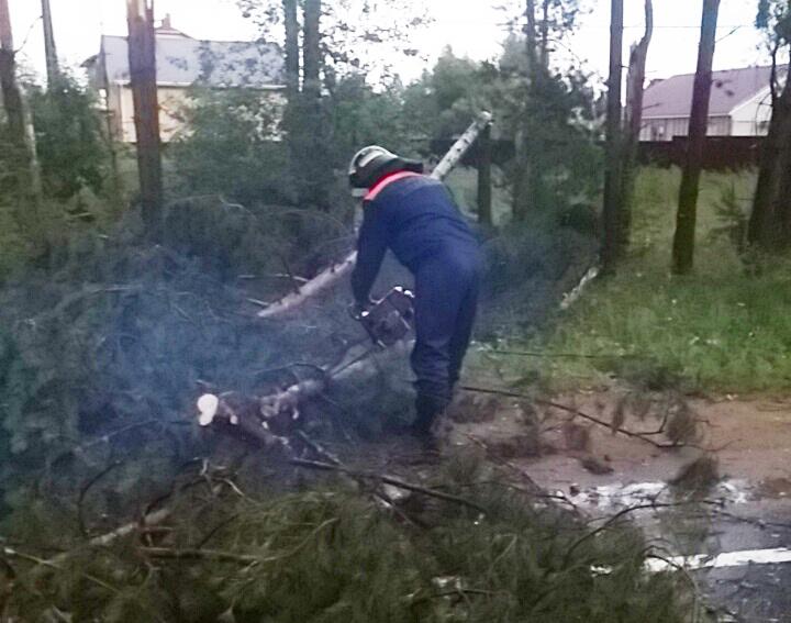Последствия прохождения циклона  с дождем и порывами ветра на территории Костромской области устранены