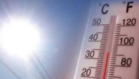 В ближайшие дни в Алтайском крае прогнозируется аномальная жара