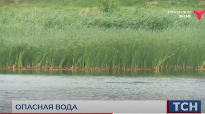 Утонули в выходные / Тюменская область