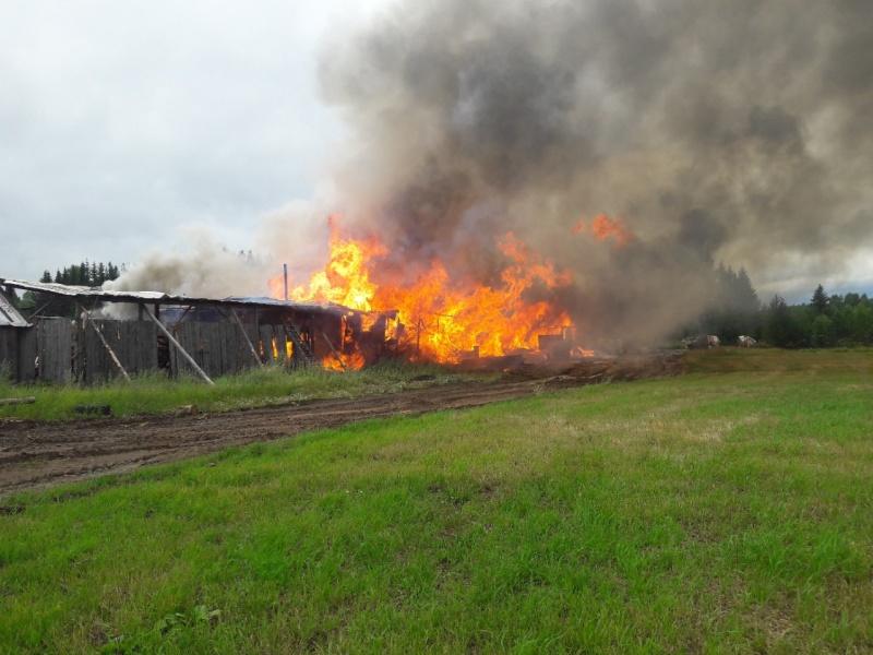 За минувшие сутки в области ликвидировано 4 пожара