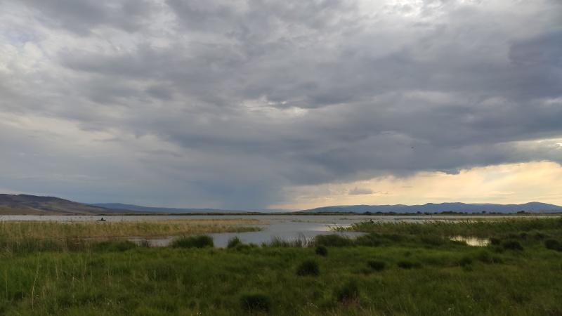 Безнадзорное нахождение на реке привело к гибели 10-летней девочки (видеокомментарий)