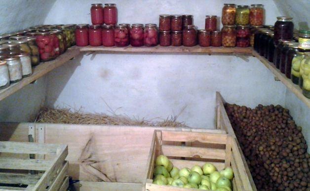 Как обеспечить безопасность подготовки погреба к хранению овощей