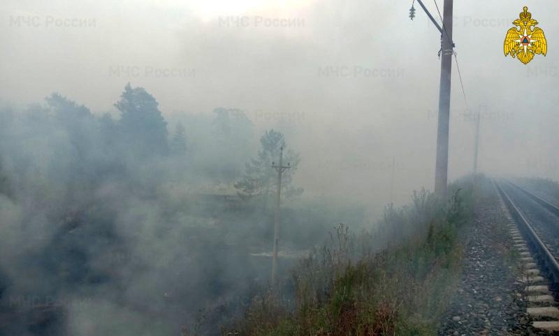 Посещение лесов под запретом – 5 класс пожароопасности!