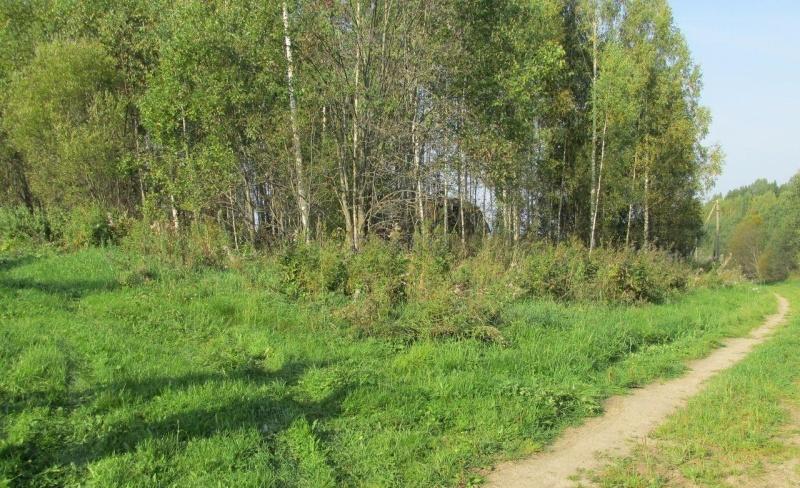 Три человека были найдены в Череповецком районе