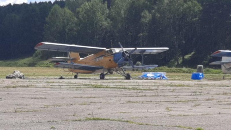 Поиски Ан-2. Информация за 19 августа