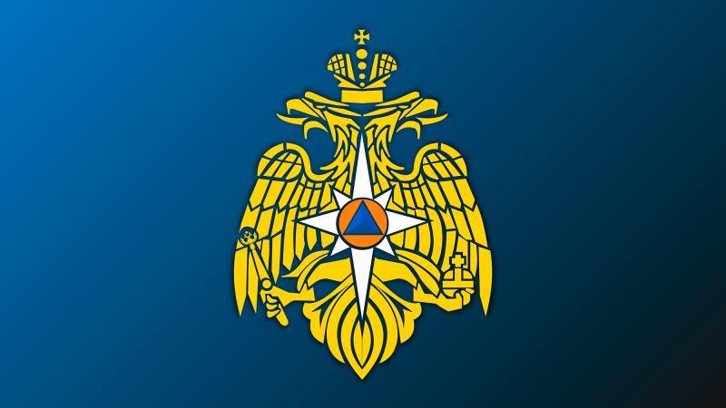 Совместно с МЧС России добровольцы команды «Молодежка ОНФ» ликвидируют ЧС