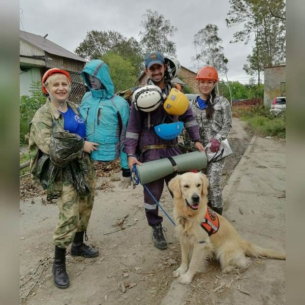 Четвероногие спасатели из Приморья готовятся к ежегодной аттестации