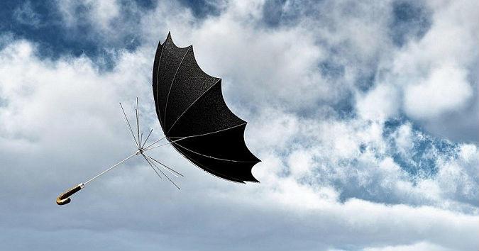 В Тамбовской области 17,18,19 сентября ожидается усиление ветра с порывами до 20 м/с