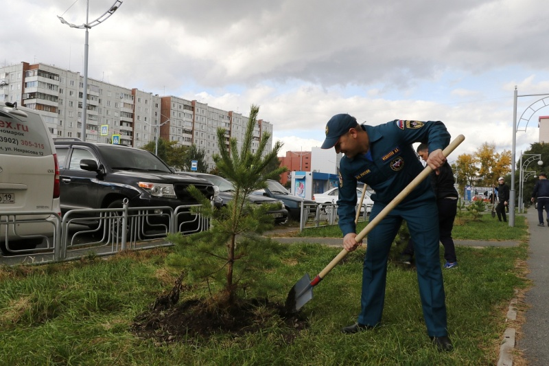 Сотрудники МЧС России по Хакасии присоединились к Всероссийской акции по высадке деревьев