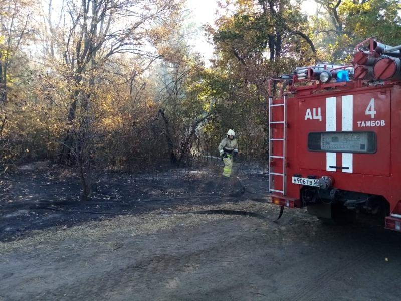 Тамбовские огнеборцы продолжают работу по тушению природных пожаров в Воронежской области