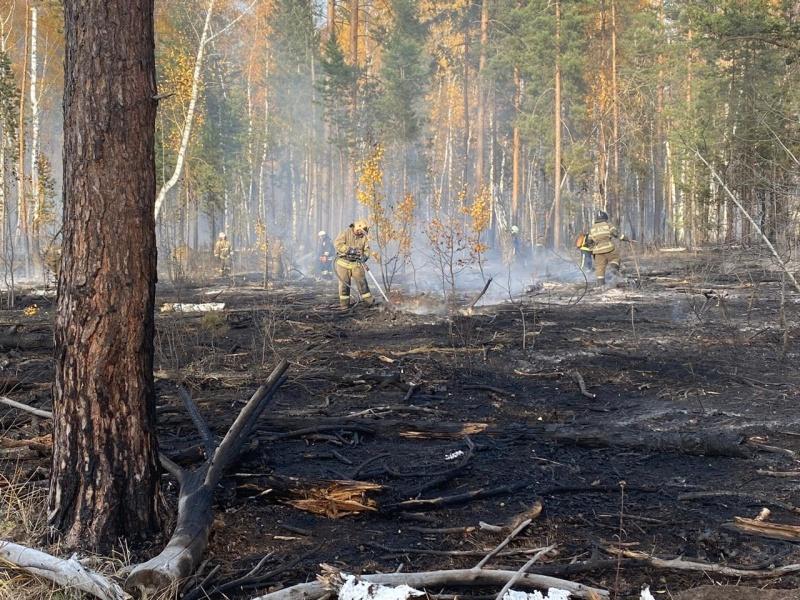 Главное управление призывает жителей Самарской области соблюдать правила пожарной безопасности в период особого  противопожарного режима