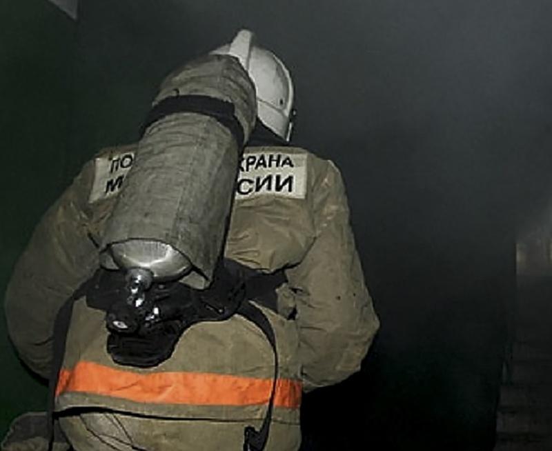 Пожар в с. Мельниково Шегарского района