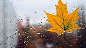Предупреждение о неблагоприятном явлении погоды на территории Оренбургской области на 26.10.2020