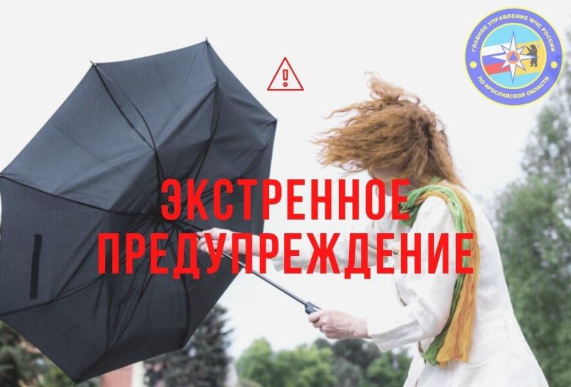 С 18:00 06 ноября до 18:00 07 ноября на территории Ярославской области в отдельных районах ожидаются порывы ветра до 15 – 17 м/с