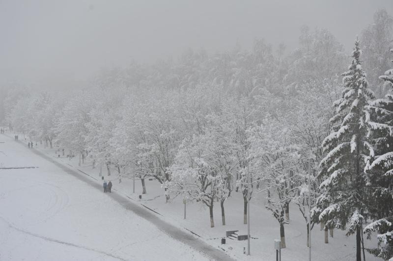 Прогноз первого дня зимы оправдался