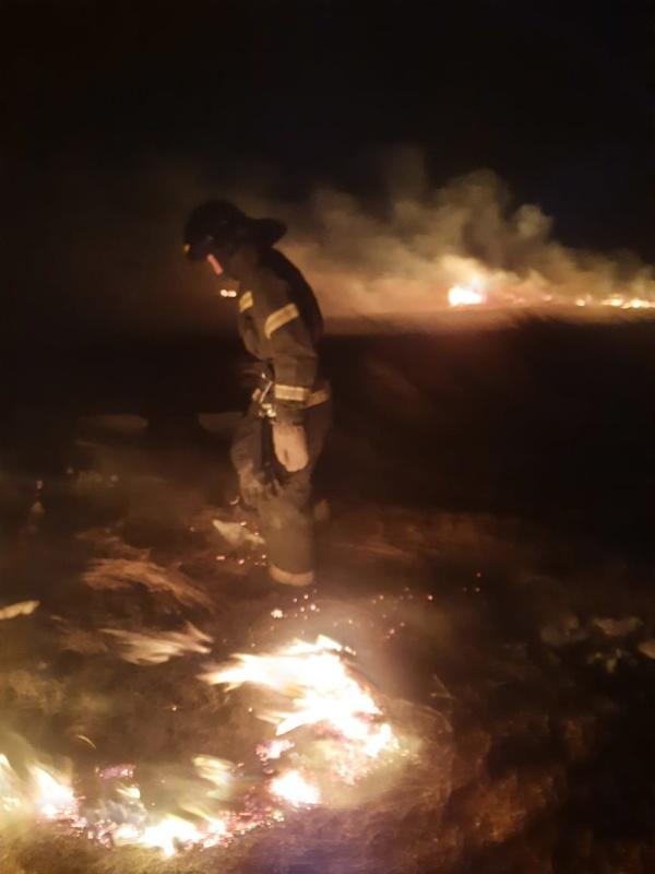 Инспекторы Госпожнадзора напоминают, что загорания сухой растительности зимой ликвидировать намного сложнее