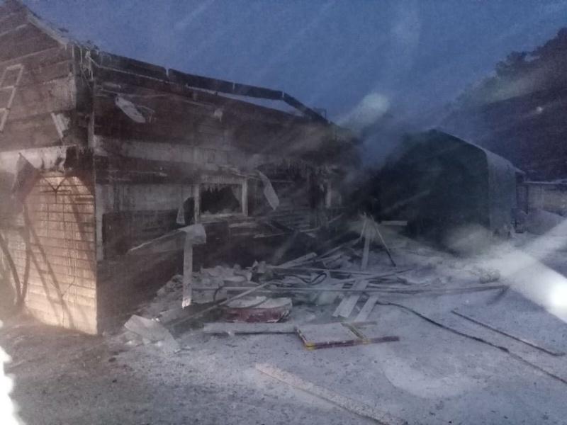 25 собак спасли иркутские пожарные при пожаре на территории питомника